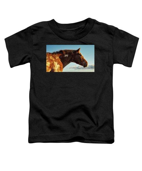 Appaloosa Mare Toddler T-Shirt