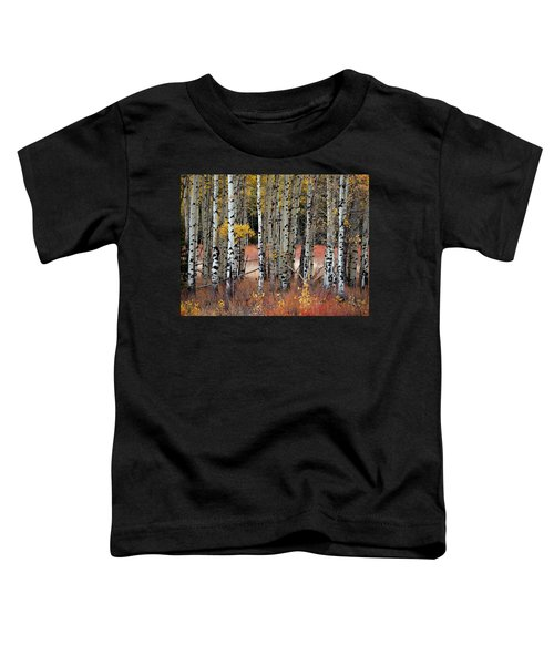 Appreciation II Toddler T-Shirt