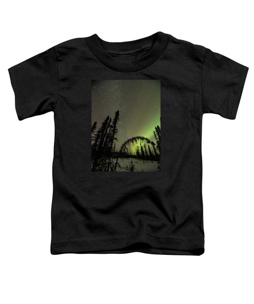 Arched Spruce Aurora Toddler T-Shirt