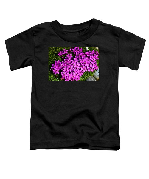 Arctic Wild Flowers Toddler T-Shirt