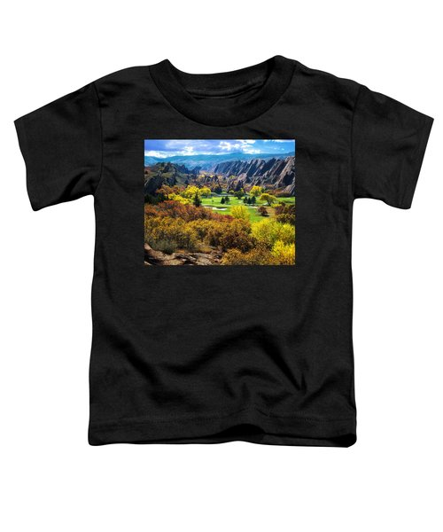 Arrowhead  Toddler T-Shirt