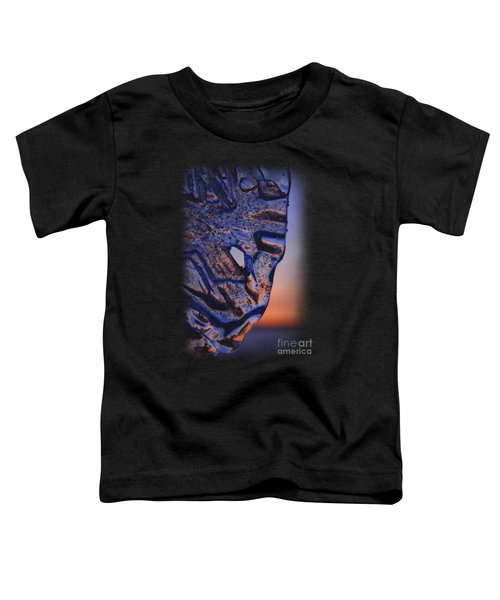Ice Lord Toddler T-Shirt