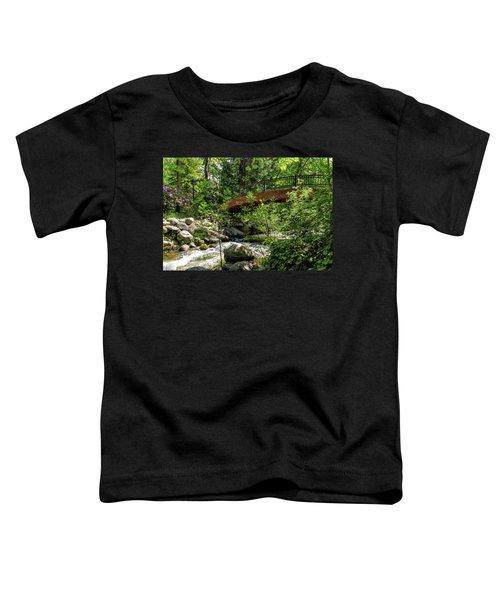 Ashland Creek Toddler T-Shirt