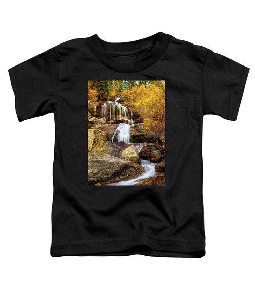 Aspen-lined Waterfalls Toddler T-Shirt