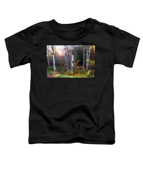 Aspen Morning Toddler T-Shirt