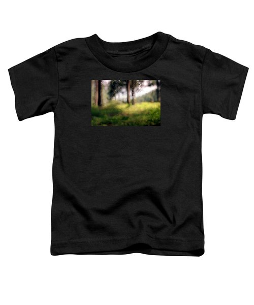 At Menashe Forest Toddler T-Shirt by Dubi Roman