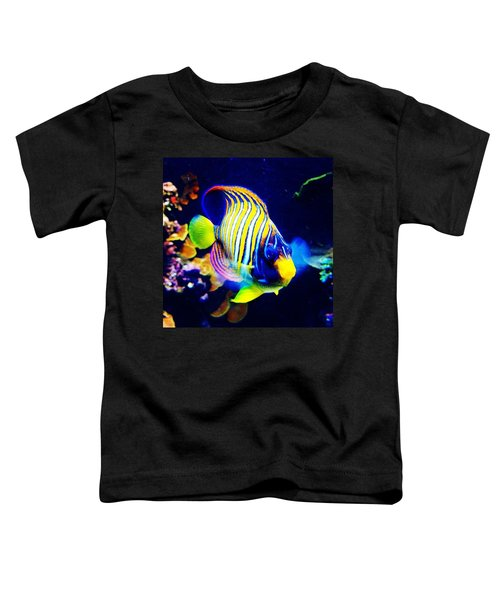 At The Denver Aquarium. #fish #denver Toddler T-Shirt