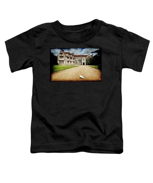 Athelhamptom Manor House Toddler T-Shirt
