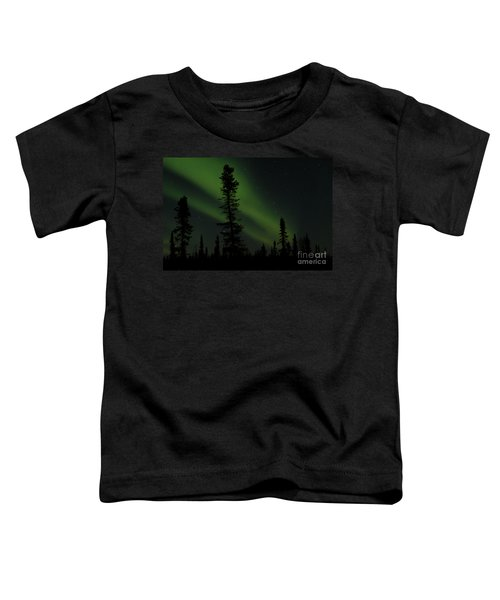 Aurora Borealis The Northern Lights Interior Alaska Toddler T-Shirt