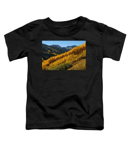 Autumn Aspen Near Castle Creek Toddler T-Shirt
