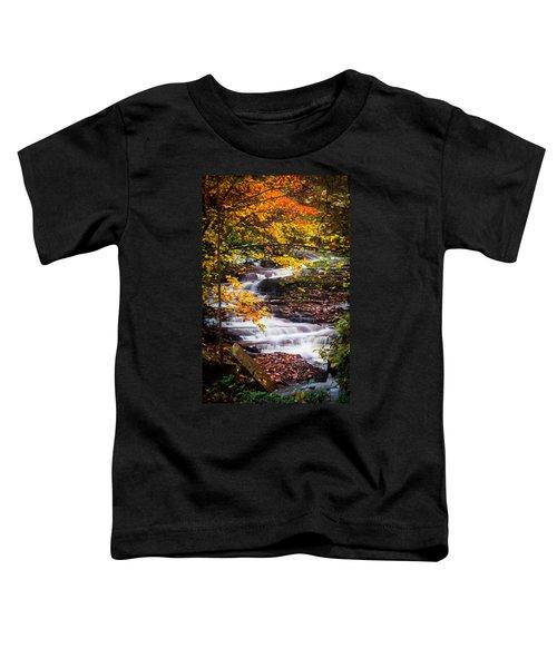Autumn Cascade  Toddler T-Shirt