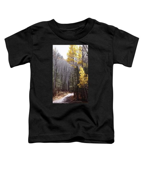 Autumn Road Toddler T-Shirt
