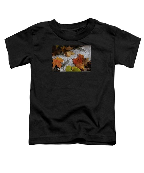 Autumnal Melange Toddler T-Shirt
