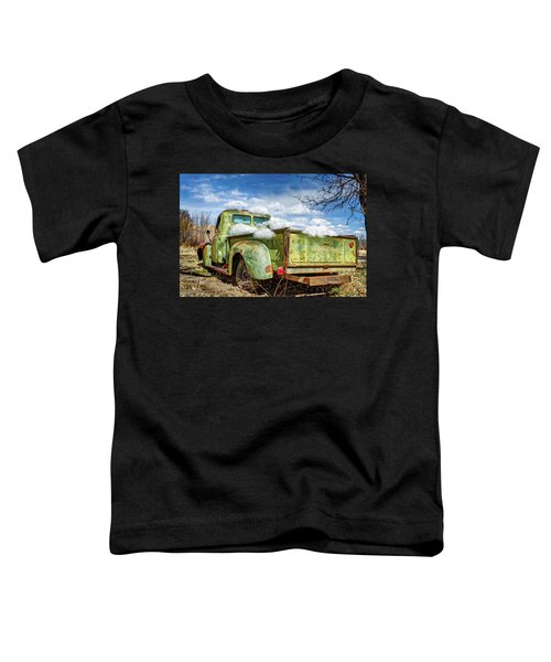 Bed Full Of Clouds Toddler T-Shirt