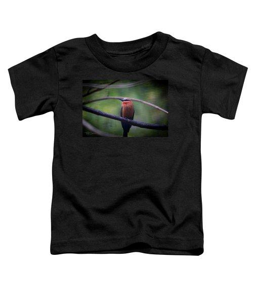 Bee-eater Toddler T-Shirt