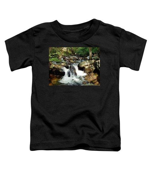 Below Anna Ruby Falls Toddler T-Shirt