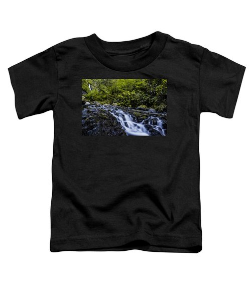 Below Pony Tail Falls Toddler T-Shirt