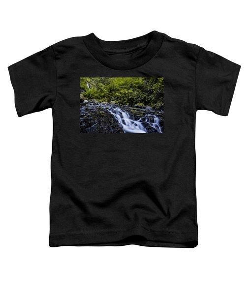 Below Pony Tail Falls Toddler T-Shirt