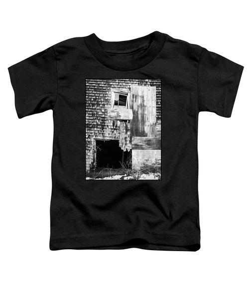 Benjamin Nye Homestead Toddler T-Shirt