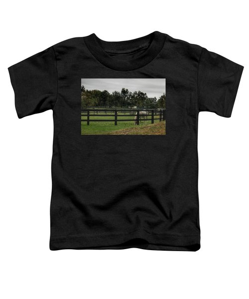 1004 - Beyond The Fence White Horse Toddler T-Shirt