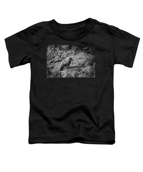 Bighorn Sheep Ewe On Wolf Creek Pass Toddler T-Shirt