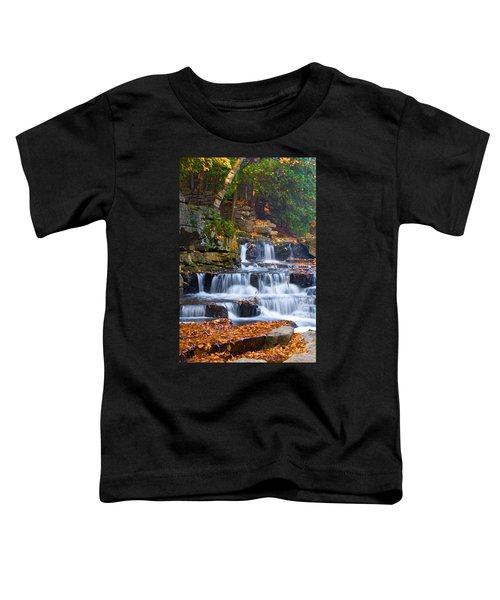 Birch Flowing Toddler T-Shirt