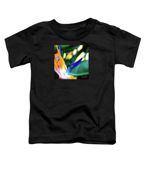 Bird Of Paradise Flower Toddler T-Shirt