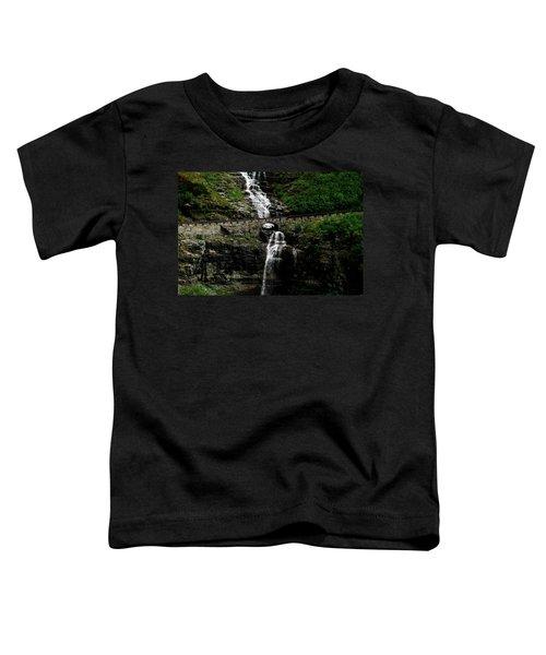Bird Woman Falls Bridge Toddler T-Shirt