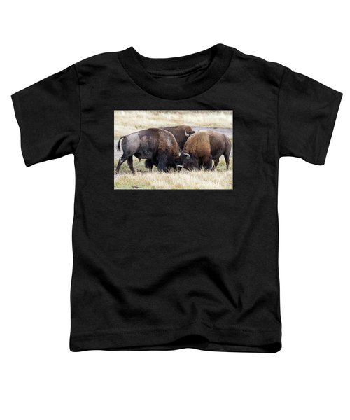 Bison Fight Toddler T-Shirt
