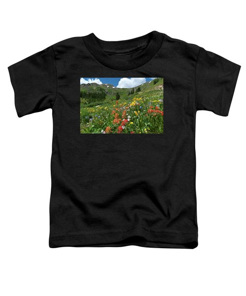 Black Bear Pass Landscape Toddler T-Shirt