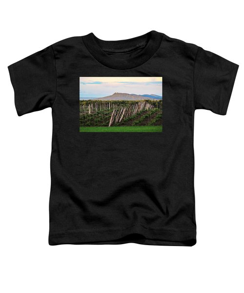 Black Birch Vineyard And Summit House View Toddler T-Shirt