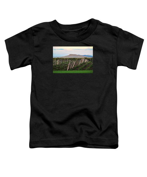 Black Birch Vineyard And Summit House View Toddler T-Shirt