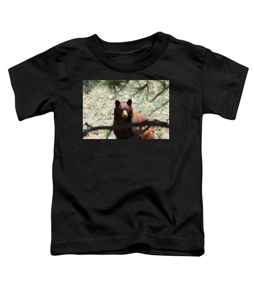 Blackbear1 Toddler T-Shirt