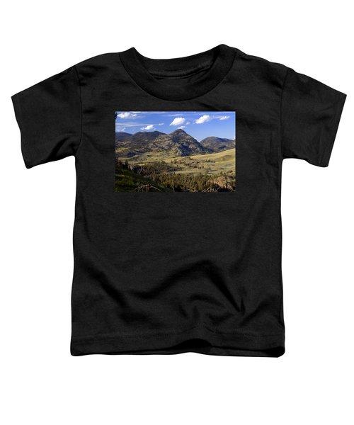 Blacktail Road Landscape 2 Toddler T-Shirt