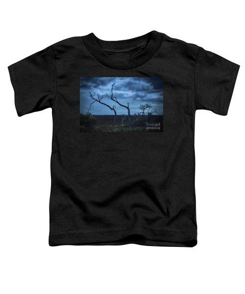 Blue Evening  Toddler T-Shirt