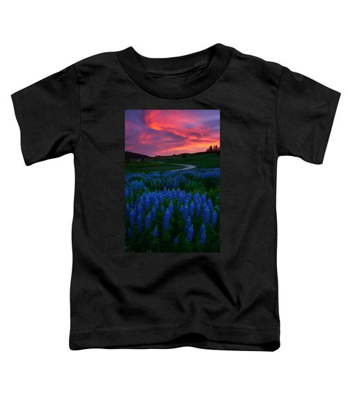 Blue Flame Toddler T-Shirt