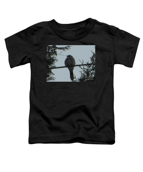 Blue Jay On Wire Toddler T-Shirt