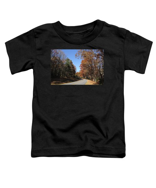 Blue Ridge Parkway Toddler T-Shirt