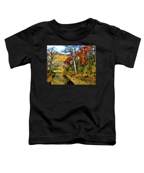 Bluff Country Toddler T-Shirt