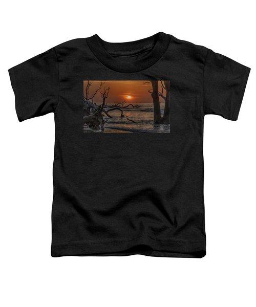 Boneyard Beach Toddler T-Shirt