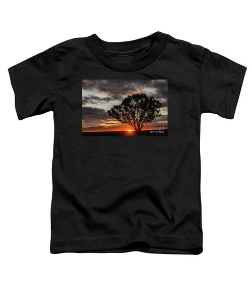 Boorowa Sunset Toddler T-Shirt
