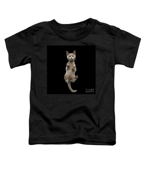 Bottom View Of Kitten Toddler T-Shirt