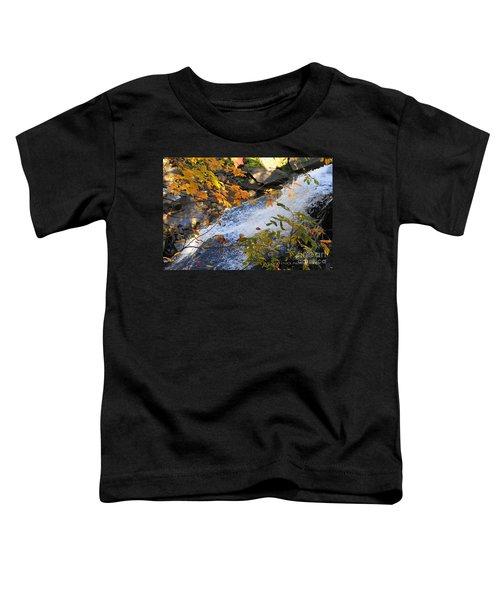 D30a-18 Brandywine Falls Photo Toddler T-Shirt