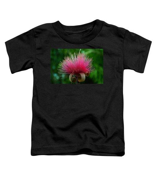 Brazilian Barbers Brush Toddler T-Shirt