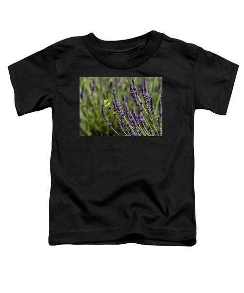 Butterfly N Lavender Toddler T-Shirt