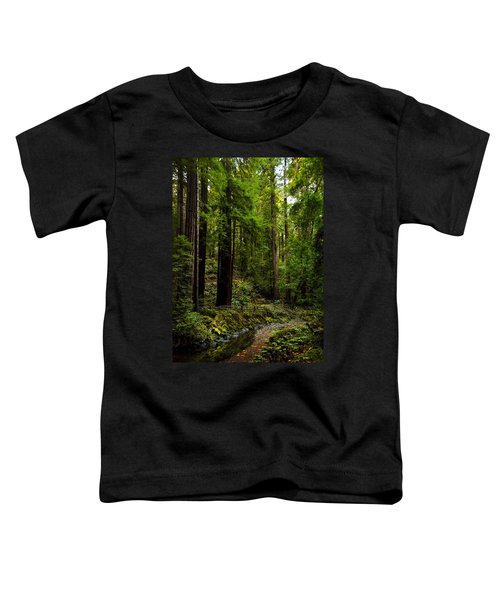 By The Stream In Muir Woods Toddler T-Shirt