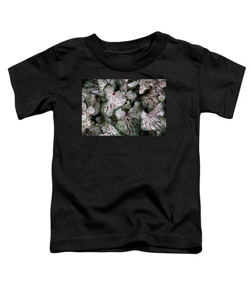 Caladium Leaves Toddler T-Shirt