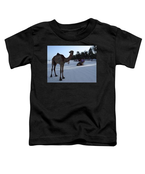 Camel On Beach Kenya Wedding 6 Toddler T-Shirt