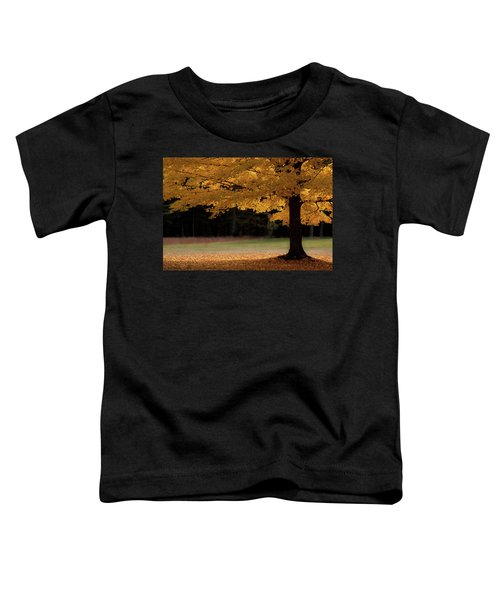 Canopy Of Autumn Gold Toddler T-Shirt