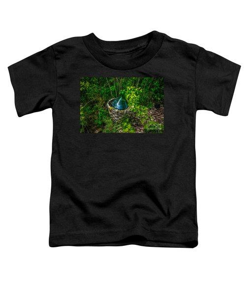 Carboy In A Basket Toddler T-Shirt